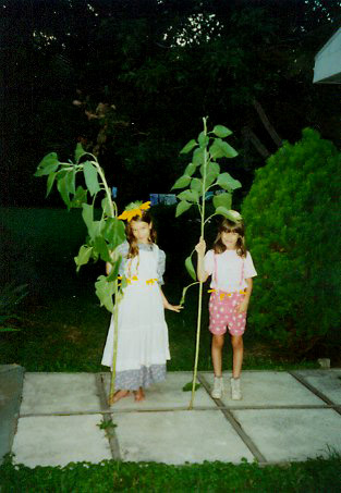 jess-and-lauren-little-with-sunflowers